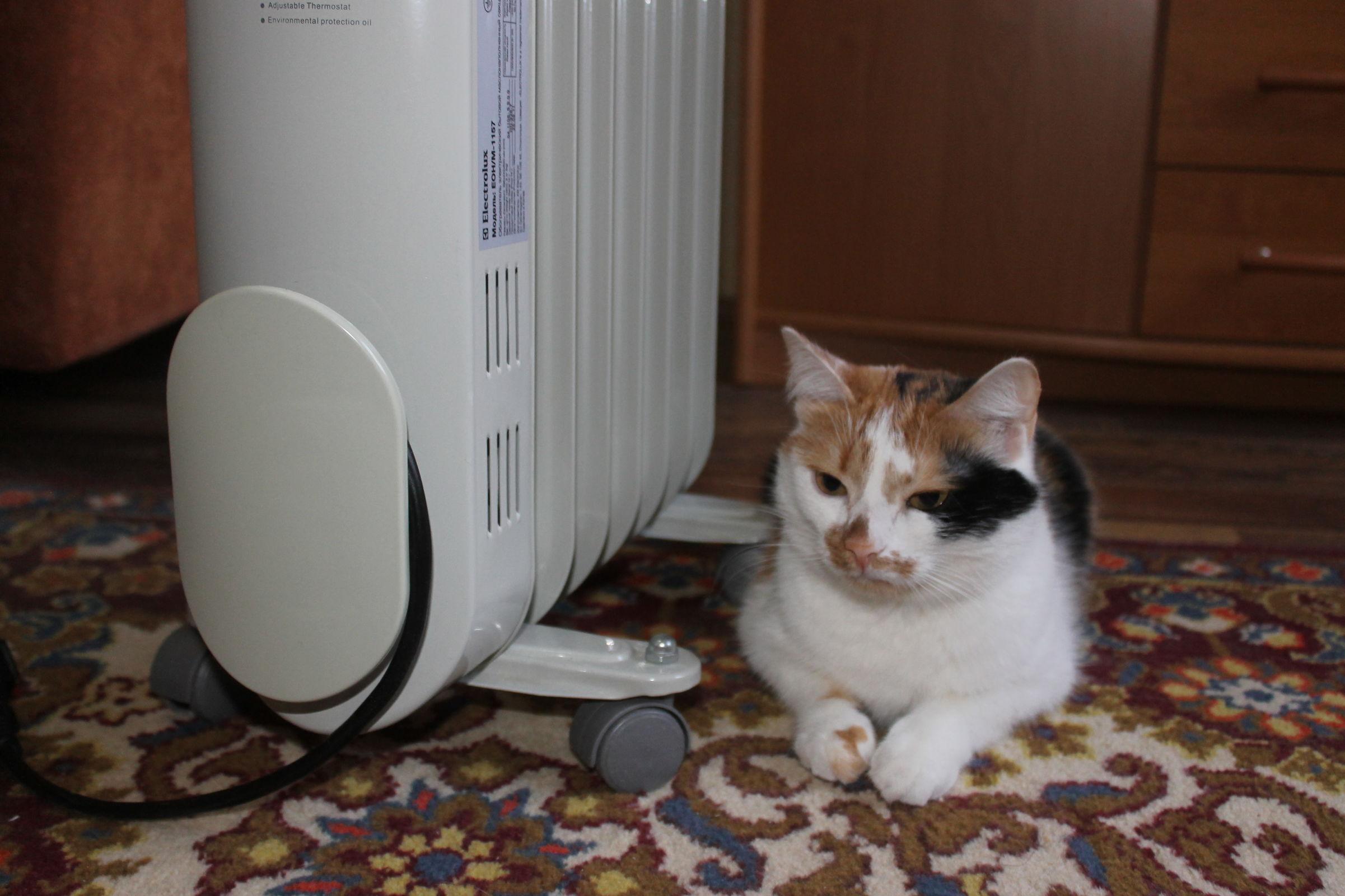 Часть домов в Ярославле остались без горячей воды и отопления