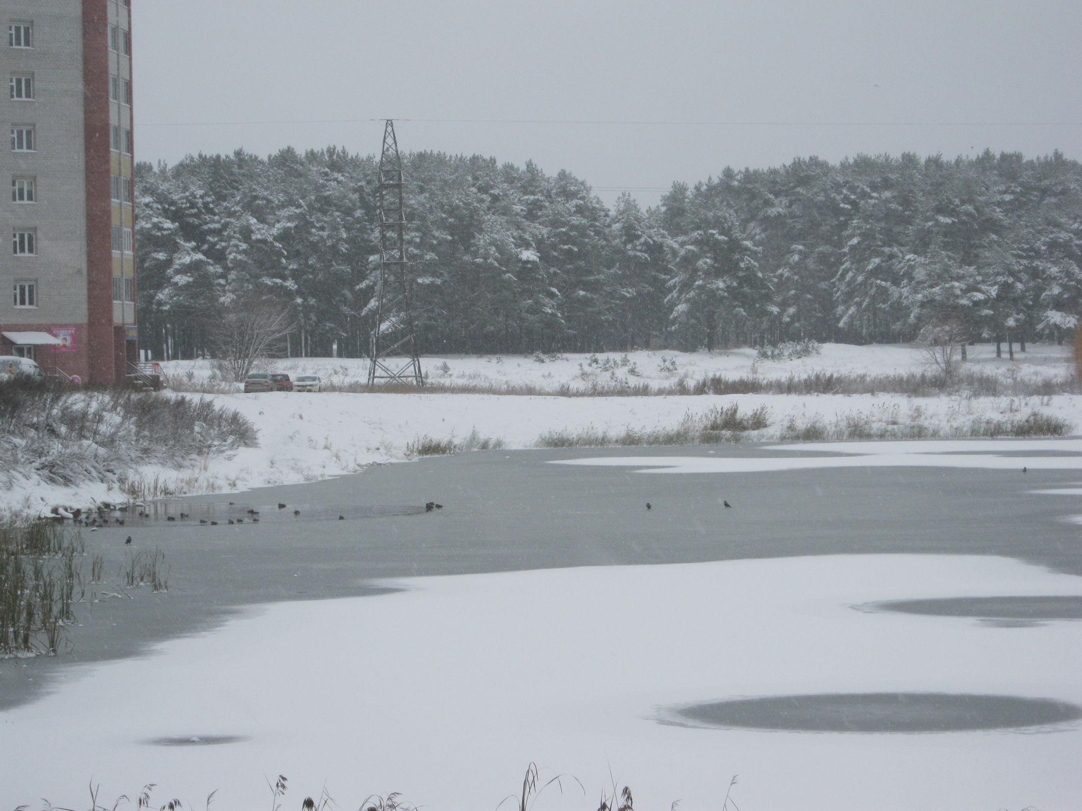 Весна откладывается: в Ярославле заметут метели, а затем похолодает