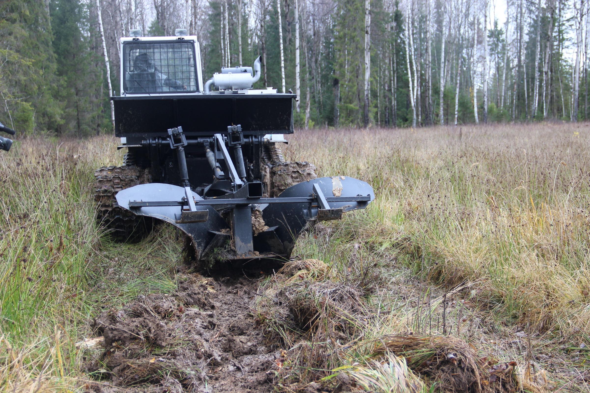В Ярославской области для защиты лесов от пожаров создадут более 840 километров минерализованных полос