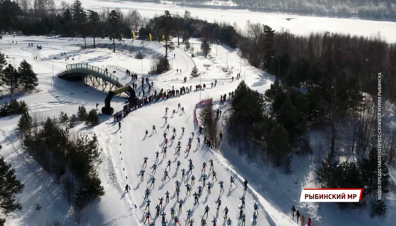 В Ярославской области прошел самый большой лыжный марафон в стране