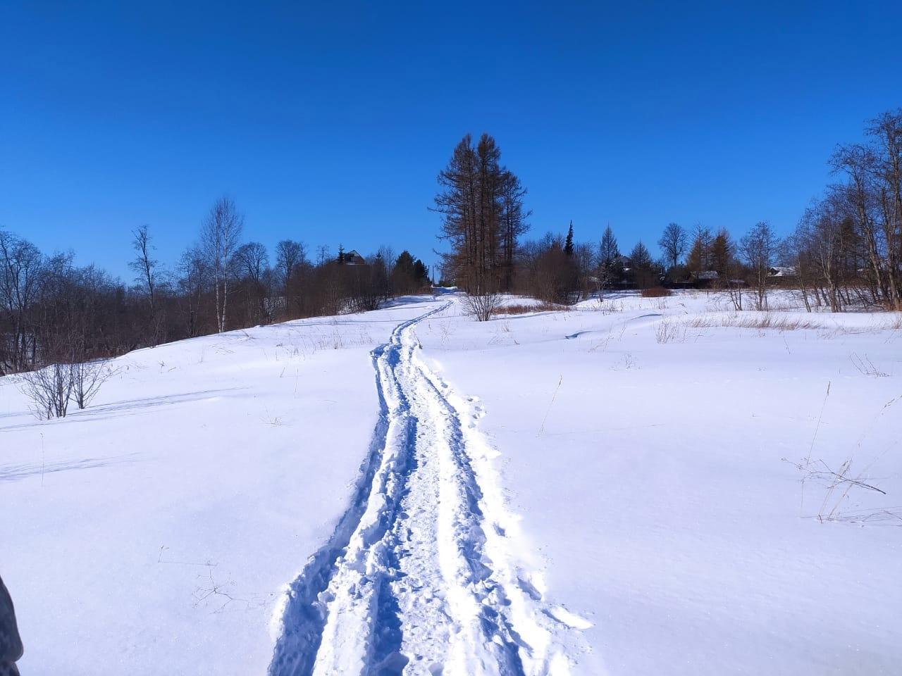 В Ярославской области нашли замерзший труп 49-летнего мужчины
