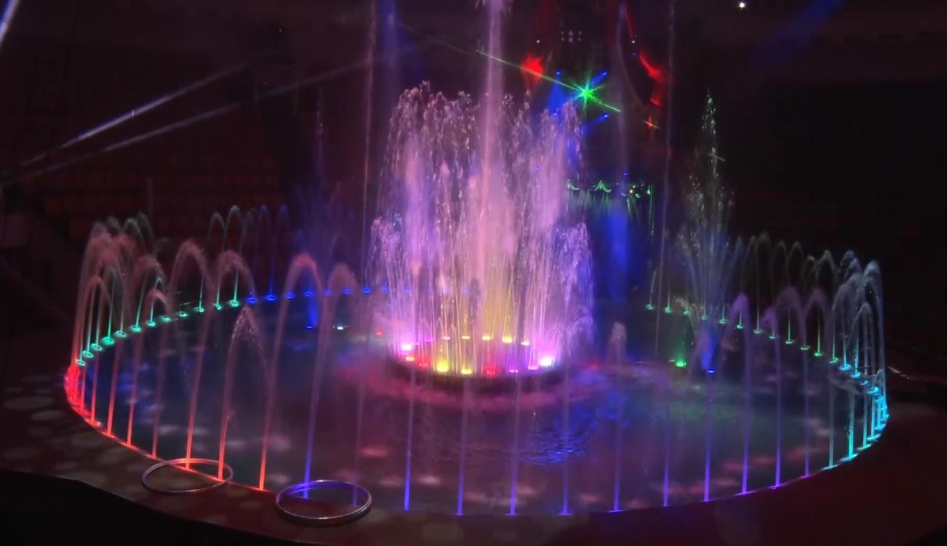 В Ярославском цирке вместо привычной арены появился бассейн