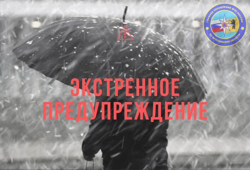 МЧС в Ярославской области обнародовало экстренное предупреждение в связи с возможной метелью