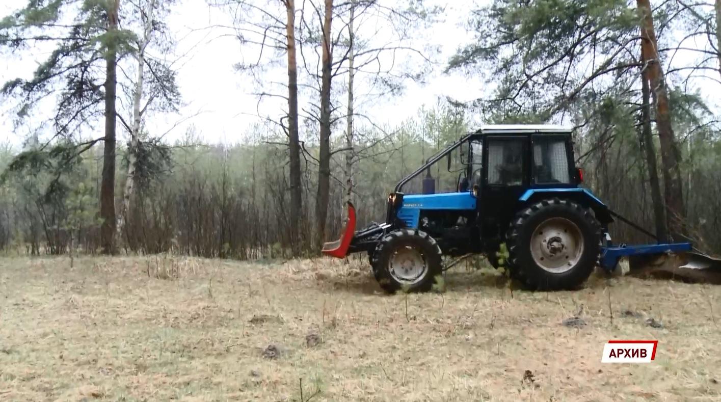 В Ярославской области оценили готовность к пожароопасному периоду в лесах