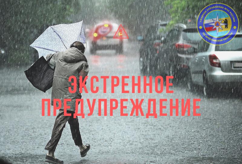 МЧС повторно предупредило о сильных порывах ветра в Ярославской области