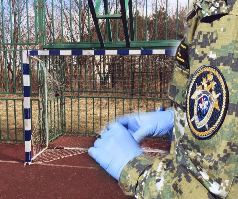 В Ярославской области футбольные ворота упали на ребенка: осудят завхоза школы
