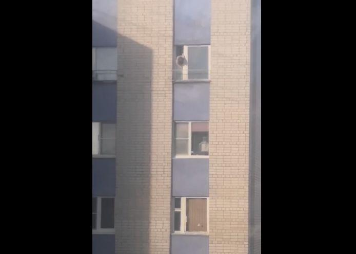 «У детей нет крыльев!»: в Ярославле ребенок играл в открытом окне многоэтажки