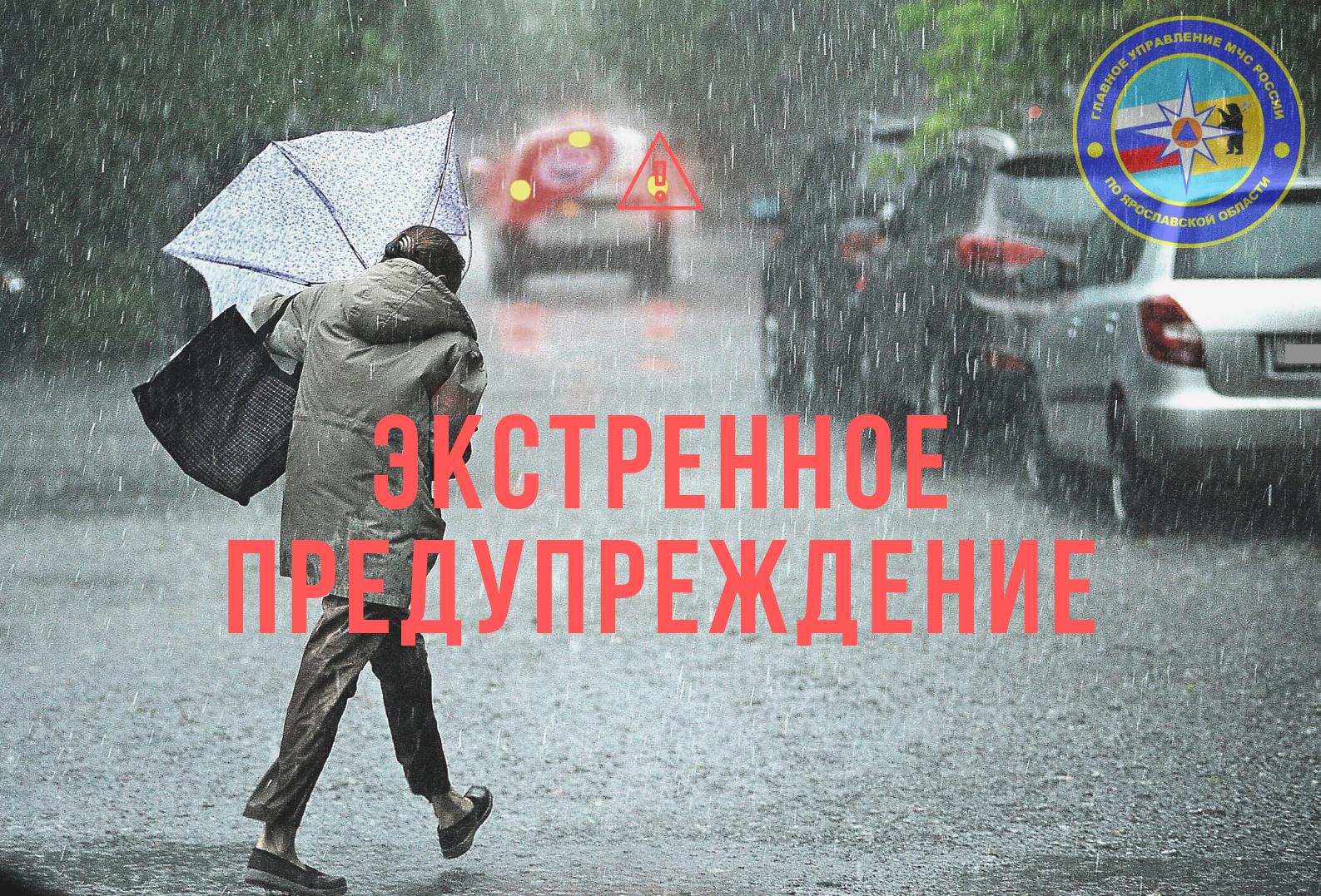 МЧС предупредило ярославцев о дожде, снеге и сильном ветре