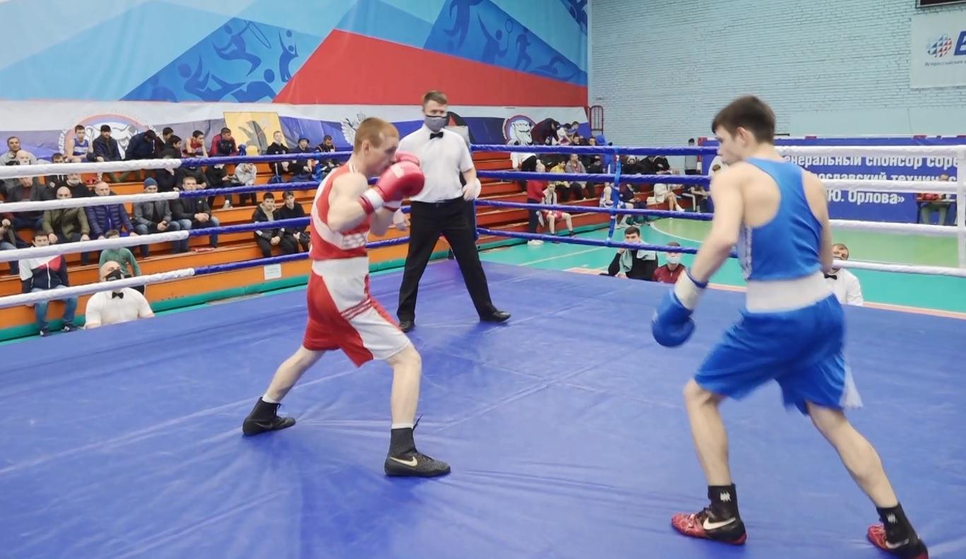 В Ярославле стартовал межрегиональный турнир по боксу
