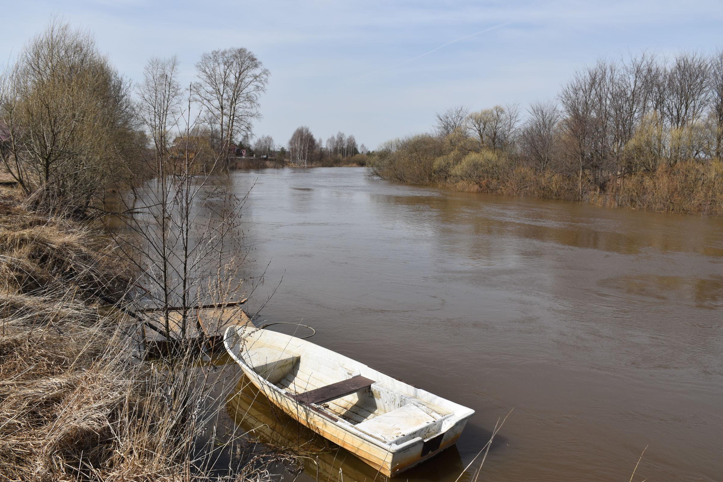 Реку Устье в Ярославской области обследовали на наличие загрязнений с помощью коптера