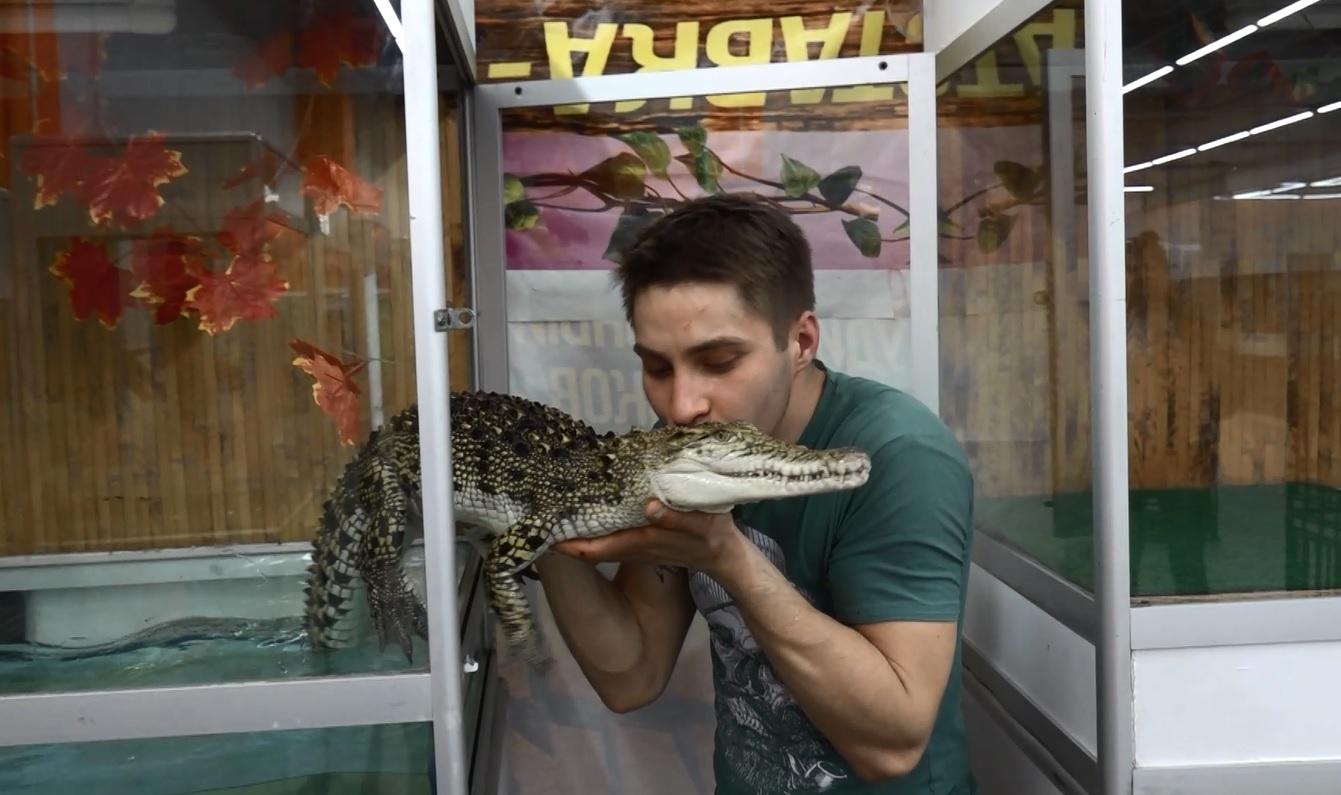 Посреди Ярославля поселились экзотические животные из тропиков