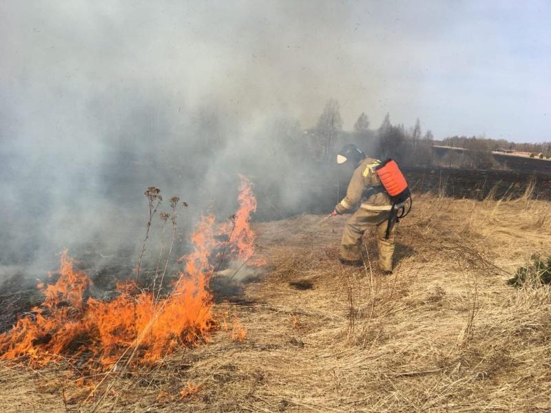В Ярославской области за сутки произошло более 40 палов сухой травы