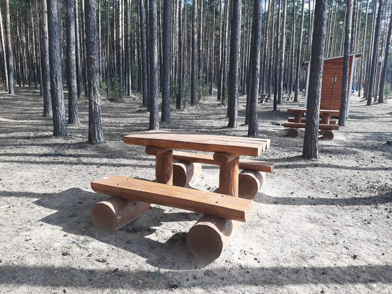 В лесах Ярославской области благоустроят две сотни мест для отдыха