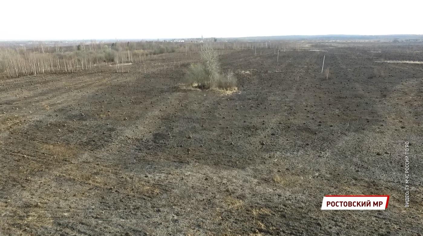 Круглосуточная борьба: в Ярославской области огонь уничтожил уже сотни гектаров полей