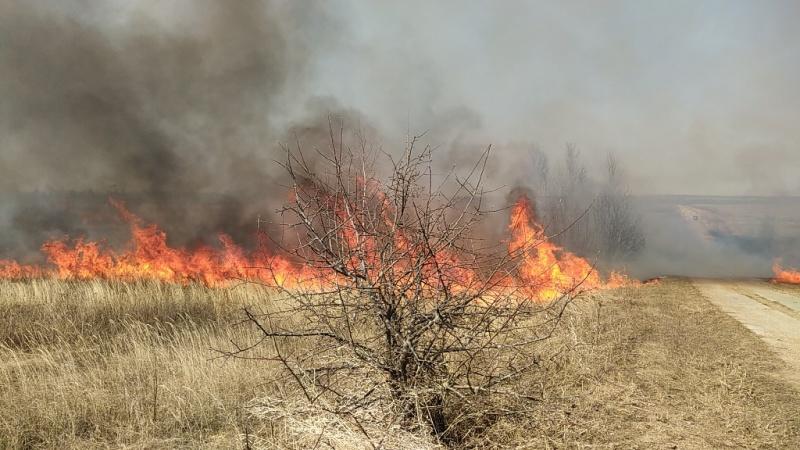 В выходные в огненном кольце оказались несколько деревень Ярославской области