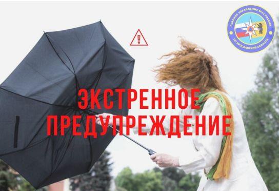 МЧС в Ярославской области выпустило экстренное предупреждение в связи с усилением ветра
