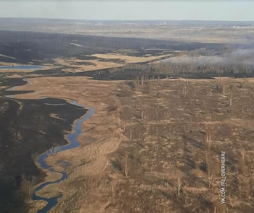 За выходные в Ярославской области огонь уничтожил больше 300 гектаров земли
