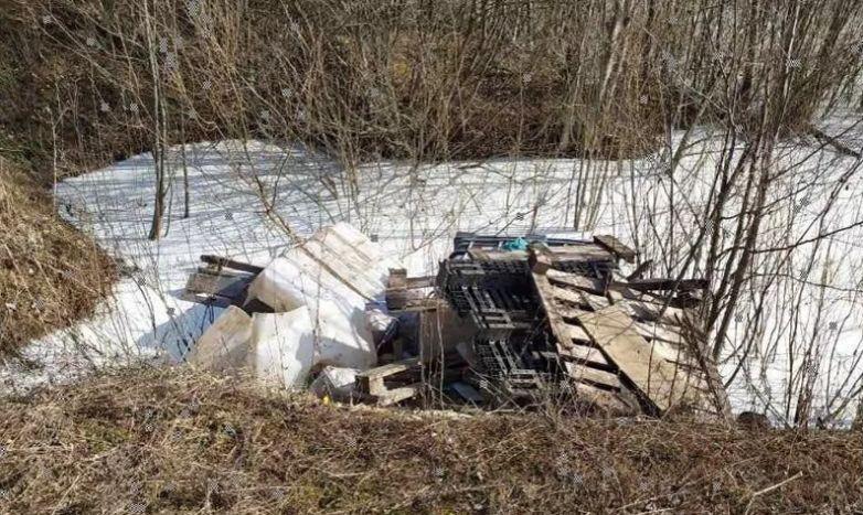 Под Ярославлем устанавливают виновных в загрязнении водоема