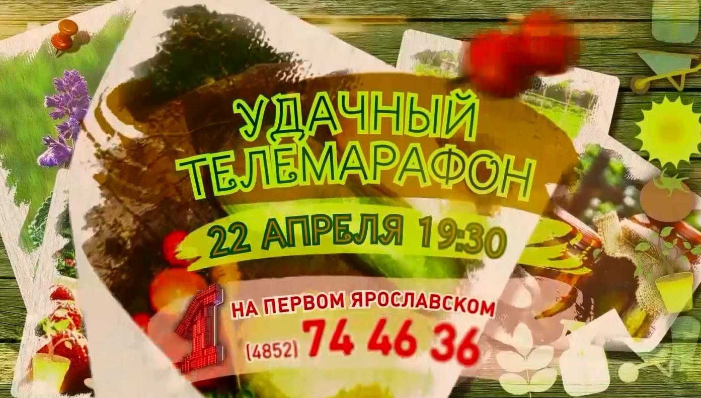 «Первый Ярославский» готовит «УДачный марафон»
