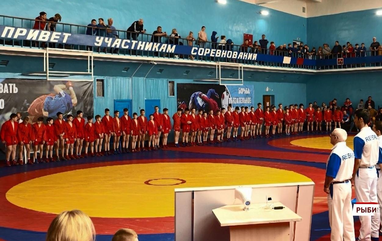 Ярославские самбисты взяли три медали на всероссийском турнире