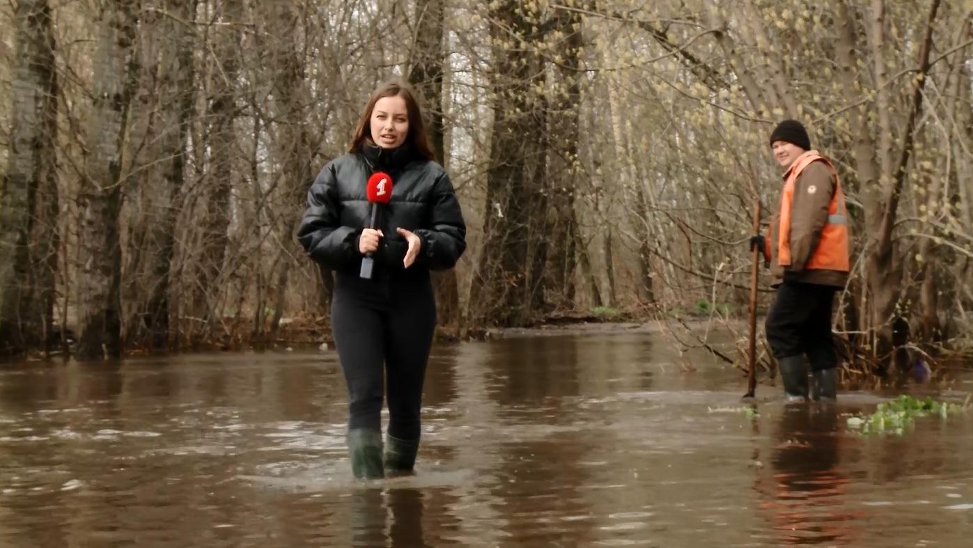 Режим ЧС, затопленные дома и дороги и упавшие деревья: Ярославская область приходит в себя после апрельских капризов погоды