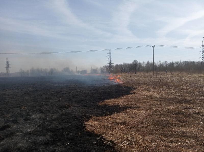 Более двухсот ярославцев оштрафовали за нарушение правил пожарной безопасности