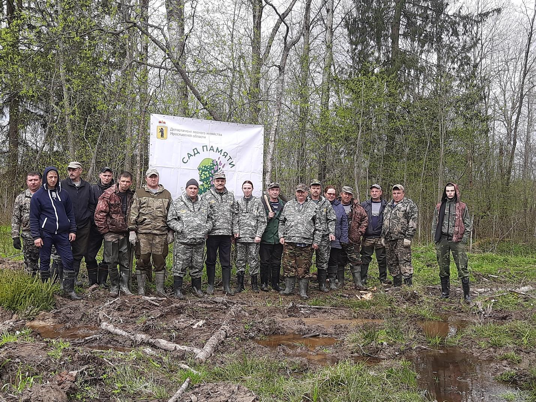 В акции «Сад памяти» приняли участие более 300 жителей Ярославской области