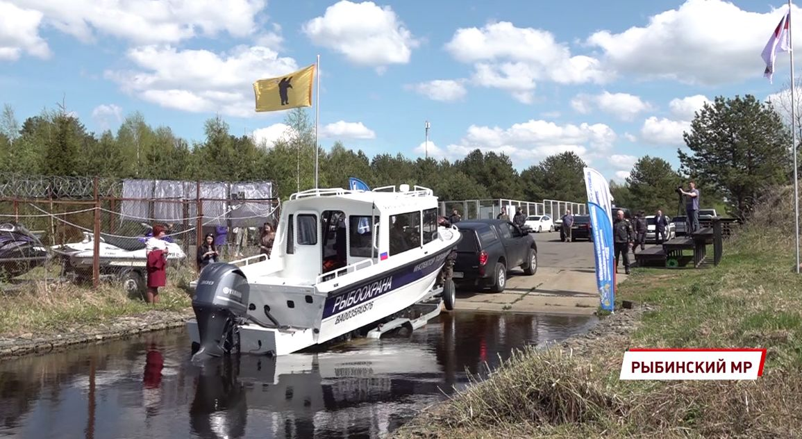 В Ярославской области сформируют аквакультурный кластер