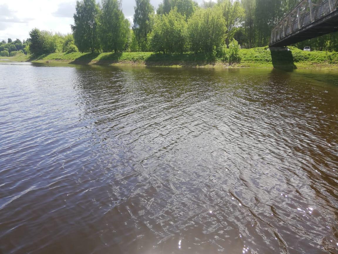 В Ярославле проверят Волгу и Ить после сообщений в соцсетях о загрязнении рек соляркой