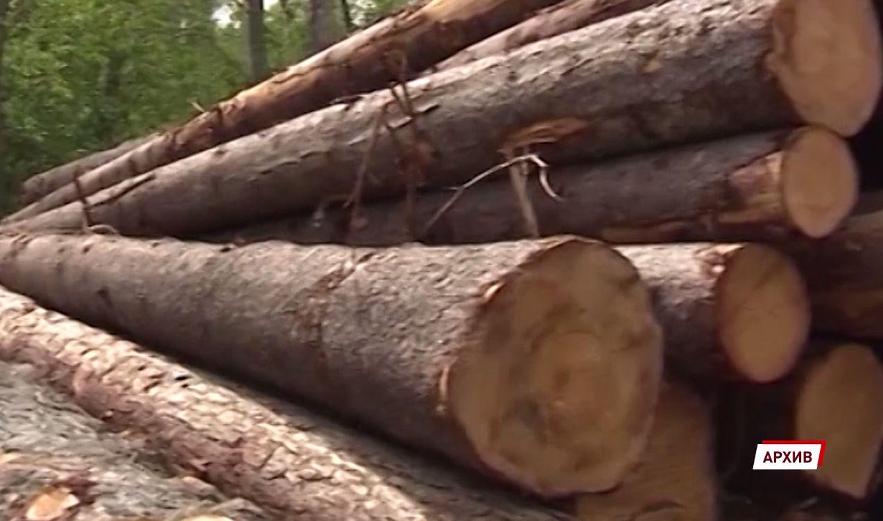 В Ярославской области осудят мужчину, срубившего леса почти на 2 миллиона рублей