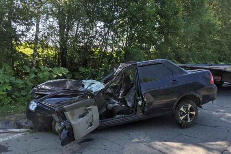 Один человек погиб и двое пострадали в ДТП с лосем в Ярославской области