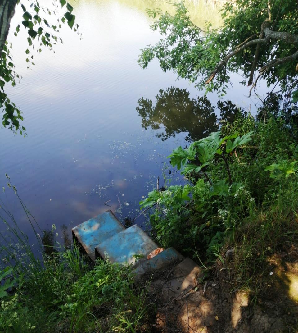 В Ярославской области в пруду утонул четырехлетний мальчик