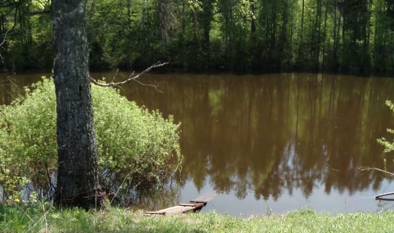 Трое детей утонули в Ярославской области за месяц