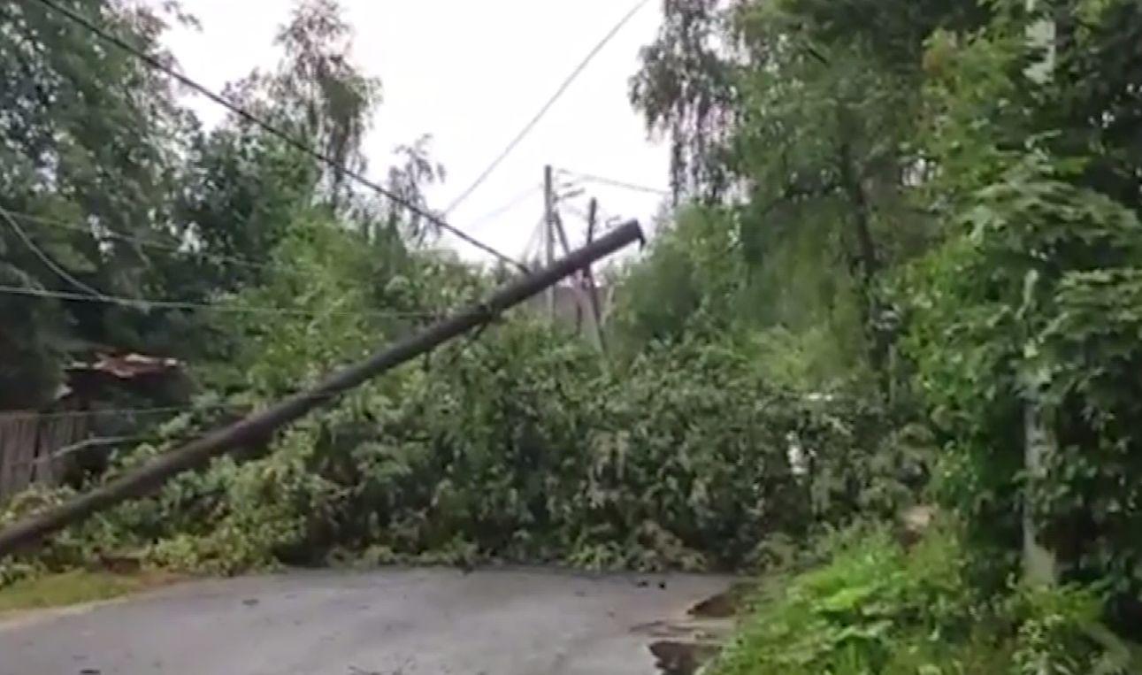 Затапливало улицы и валило деревья: последствия грозы в Ярославле устраняли несколько часов