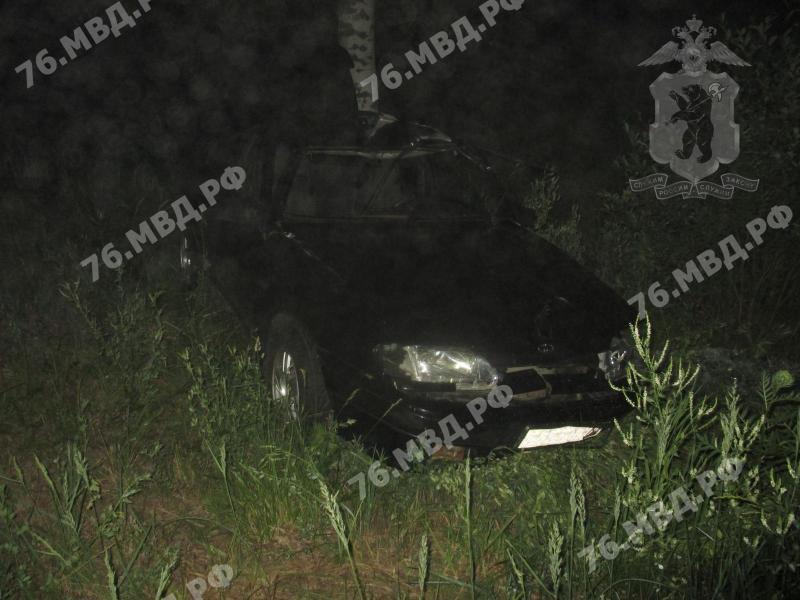 В Ярославской области ВАЗ сбил лося и врезался в дерево: трое пострадавших