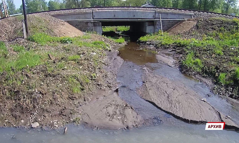 Полиция установит виновных в загрязнении Пятовского ручья в Ярославле
