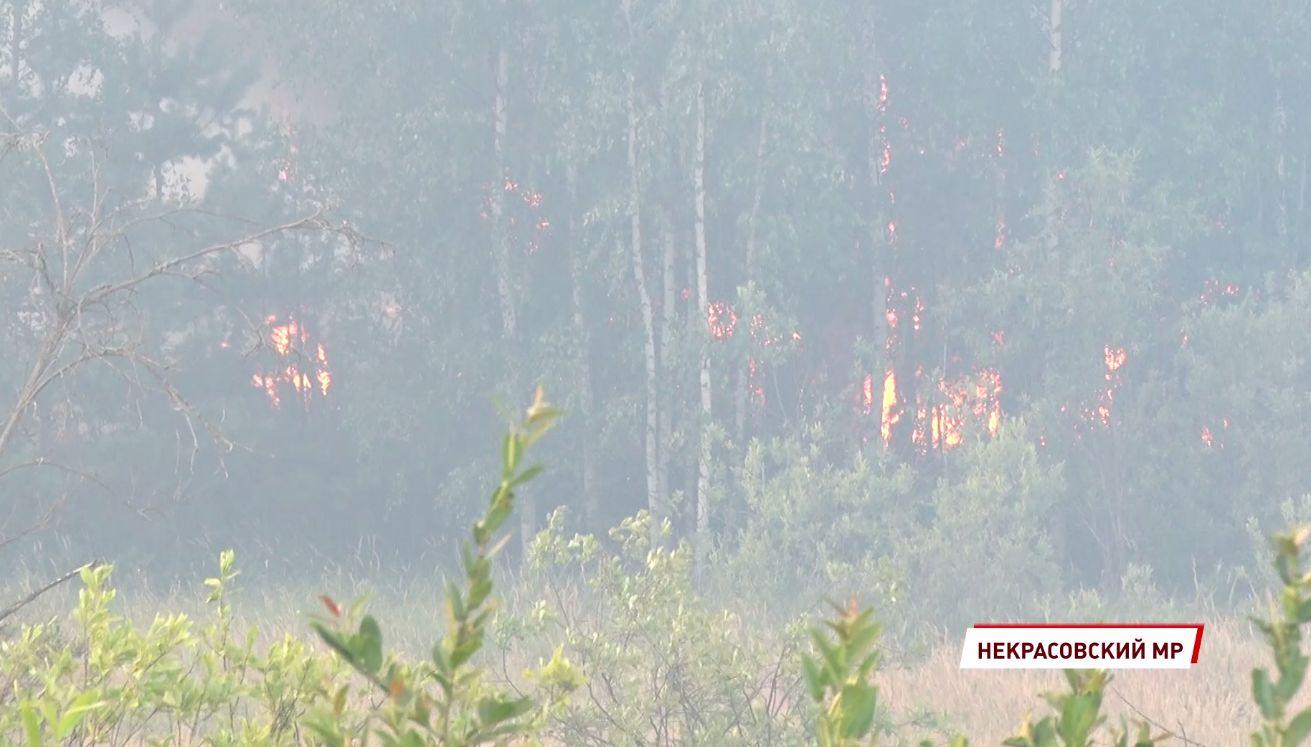 Пожар недалеко от Красного Профинтерна: пламя подошло близко к жилым домам