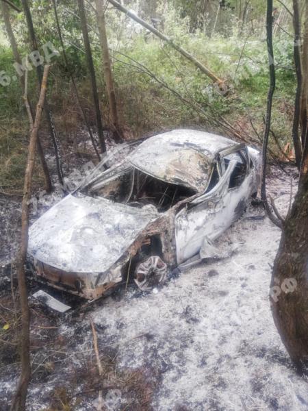 В Ярославской области сгорел вылетевший в кювет автомобиль: погиб человек
