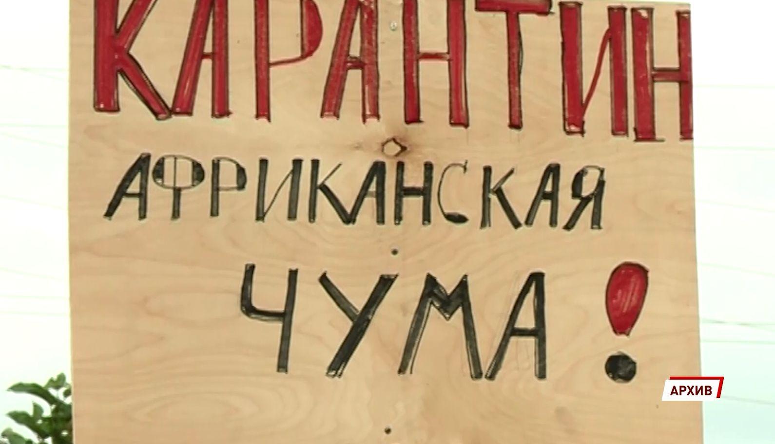 В Ярославской области из-за неблагоприятной ситуации по африканской чуме свиней запретили охоту
