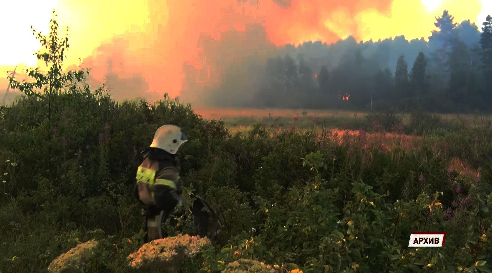 Владимир Путин в круглосуточном режиме контролирует ситуацию по подтоплениям и пожарам в России