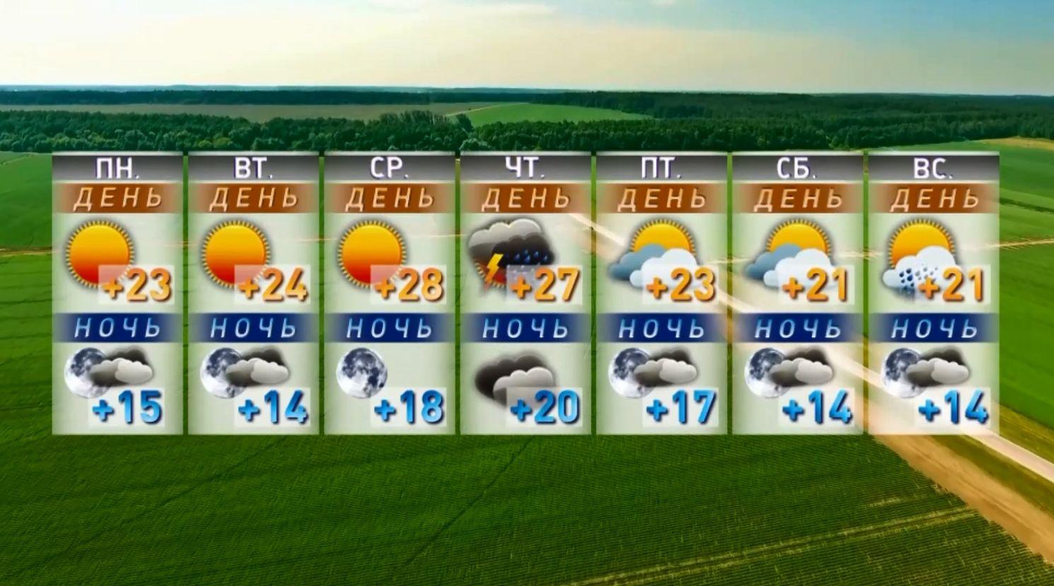 Не забываем зонтики – в ближайшую неделю в Ярославле будет дождливо, но тепло