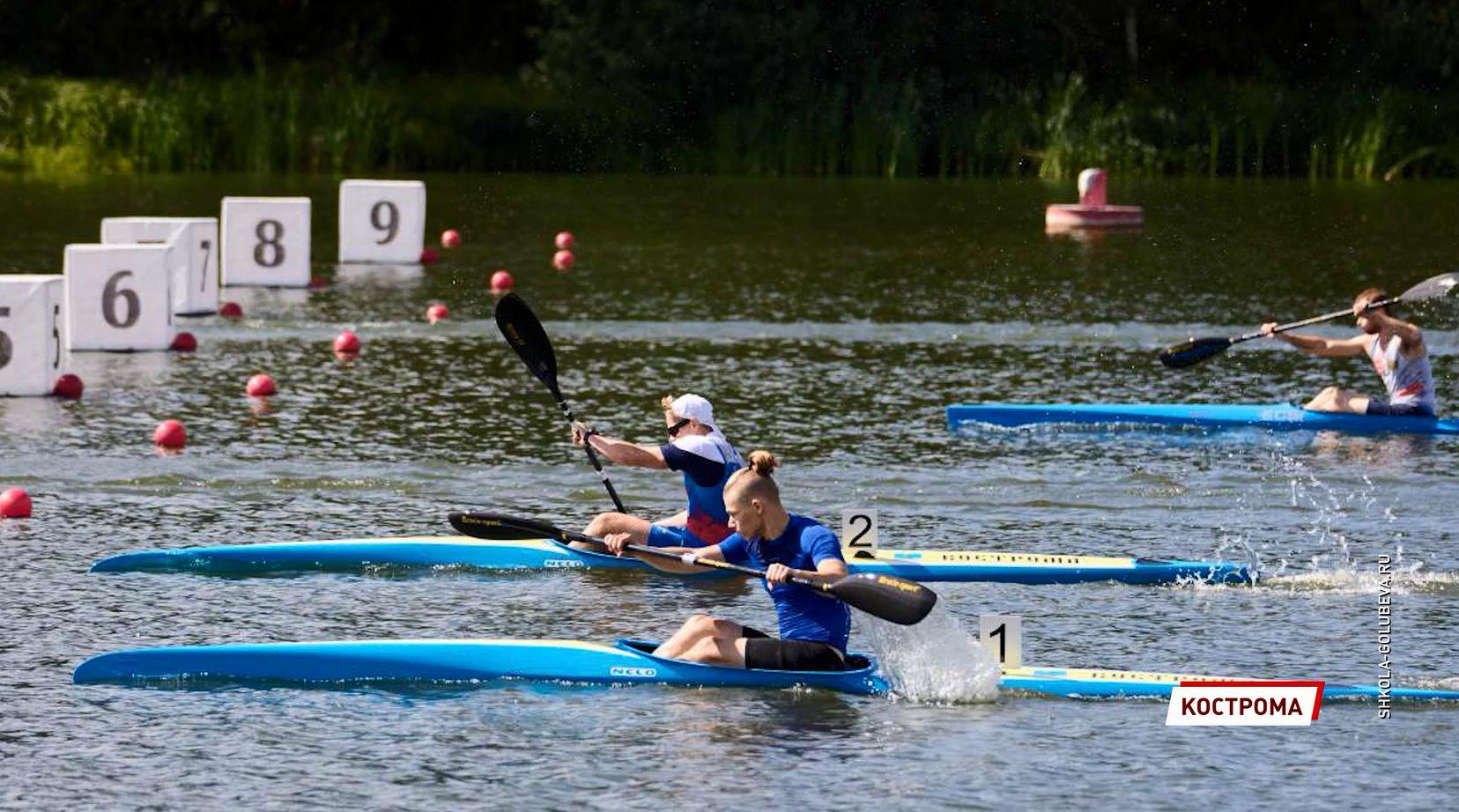 Ярославские спортсмены привезли 19 медалей на соревнованиях по гребле на байдарках и каноэ