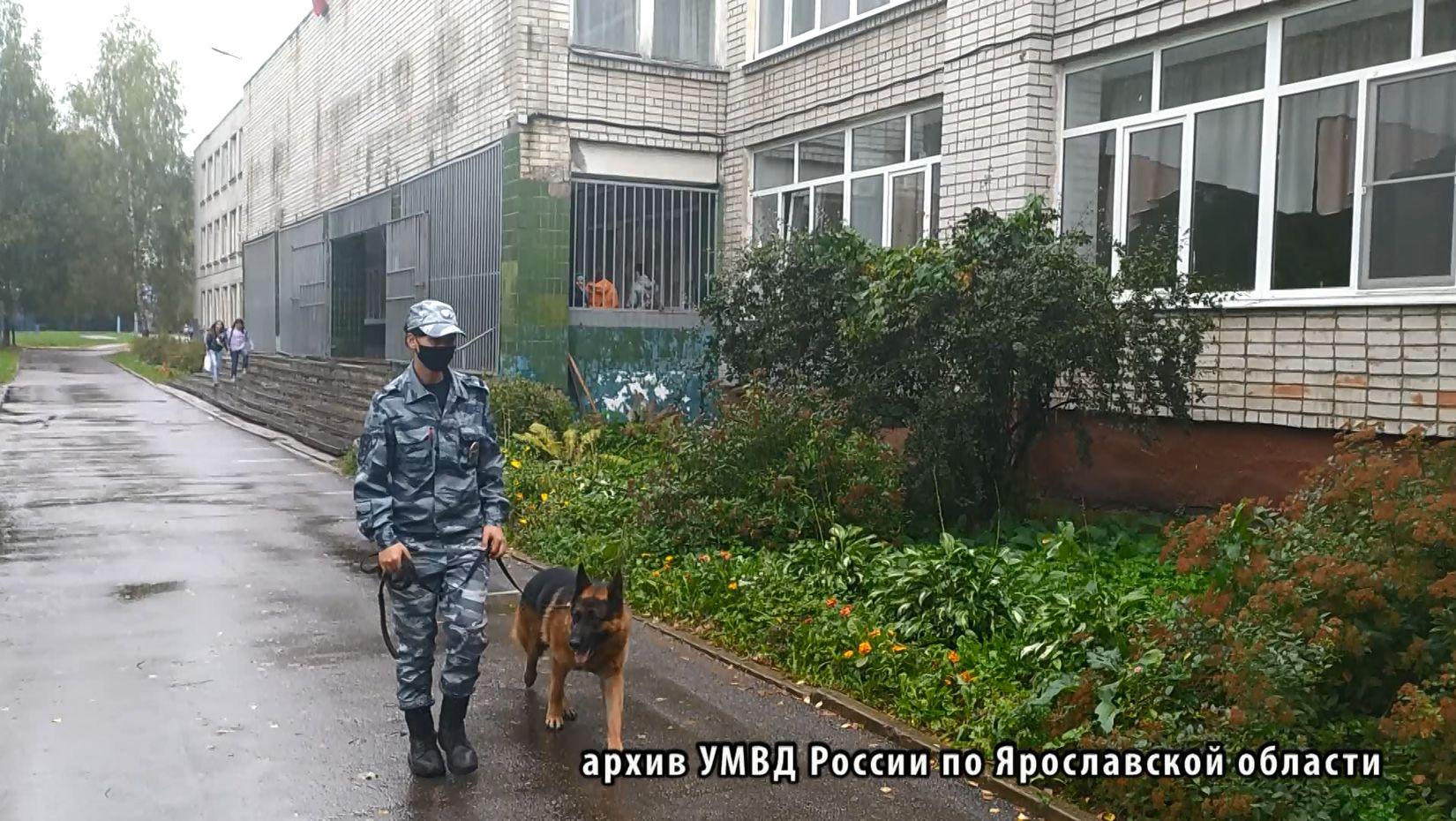 Вся полиция Ярославской области перешла на работу в усиленном режиме в канун 1 сентября