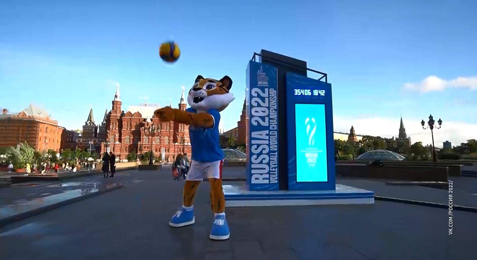 Тигр опередил медведя и робота в голосовании за выбор талисмана волейбольного чемпионата мира, который состоится в 2022 году в том числе и в Ярославле