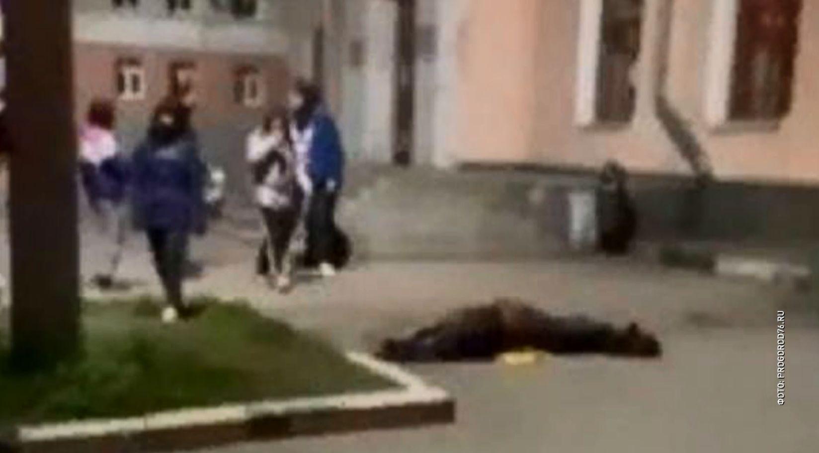 В социальных сетях Ярославля появились фотографии лежащей в центре города лошади