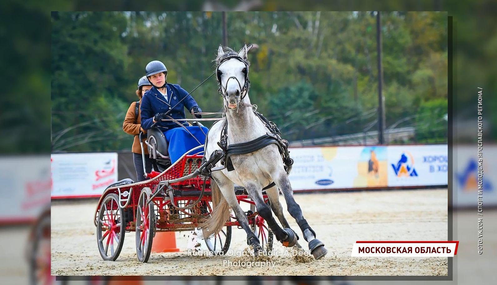 Лучшая в стране - ярославна Екатерина Попова стала чемпионкой России по конному спорту