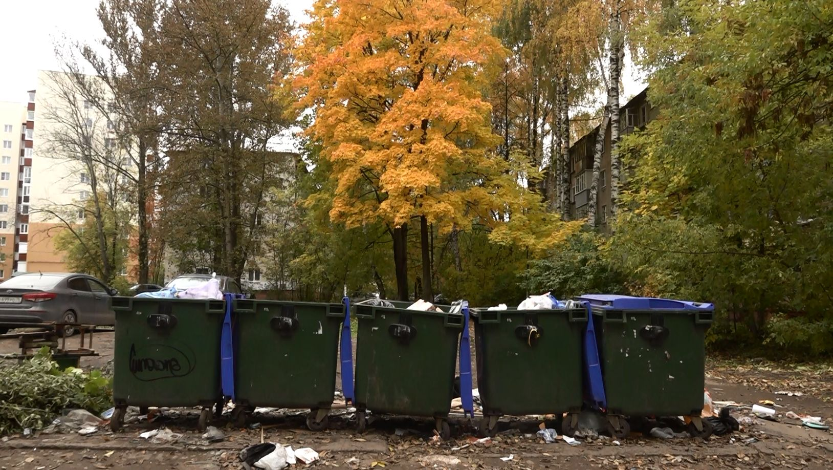 В Ярославской области усилен надзор за состоянием контейнерных площадок