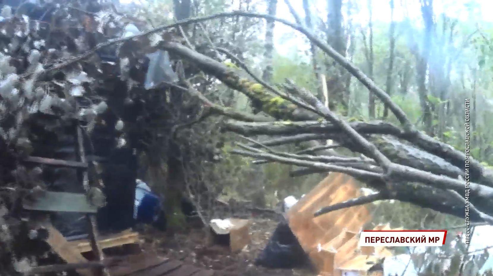 В Переславском районе Ярославской области пресечена деятельность лесной нарколаборатории