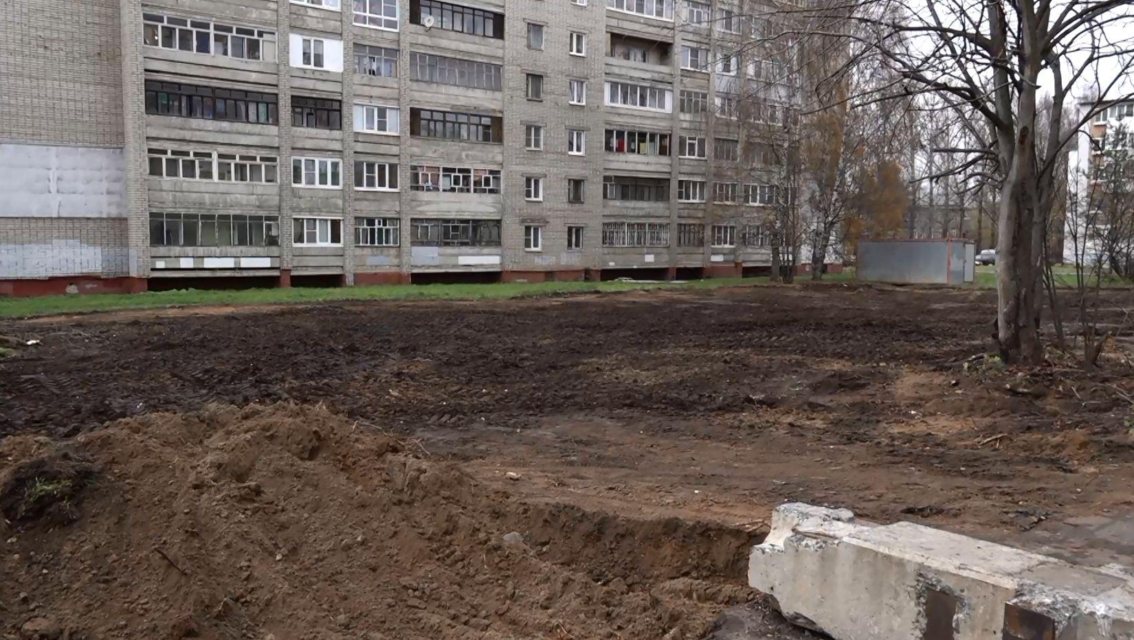 Жители домов по улице Нефтяников Ярославля жалуются на вырубку многолетних деревьев