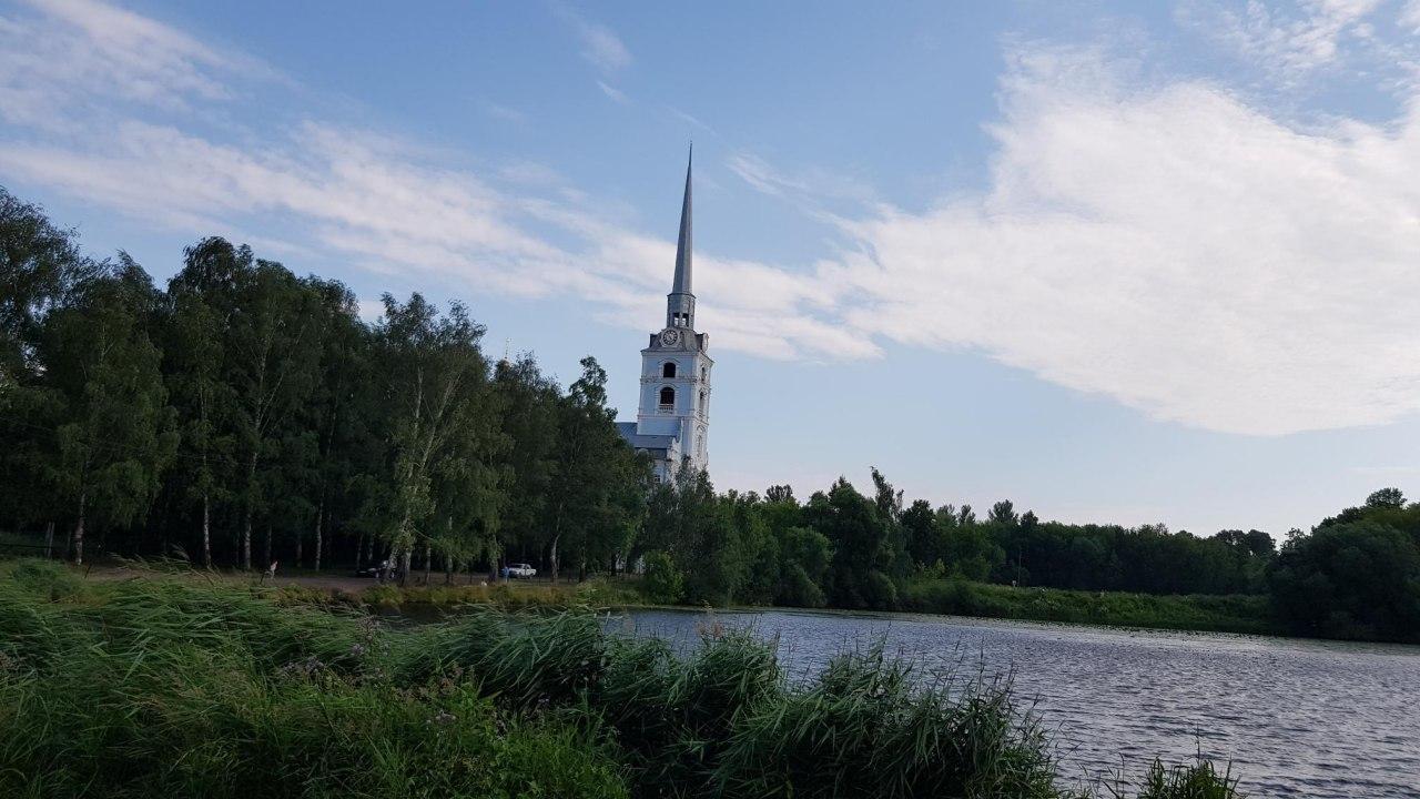В Петропавловских прудах в Ярославле обнаружили свежее фекальное загрязнение